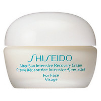 Shiseido Sun Care After Sun Intense Recovery Cream
