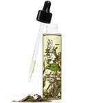 Teaology Body Care Bancha Oil Body